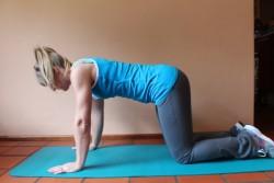 advanced serratus anterior exercise  1; p14