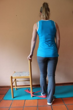 inner thigh muscle exercises in standing with theraband 1; p56