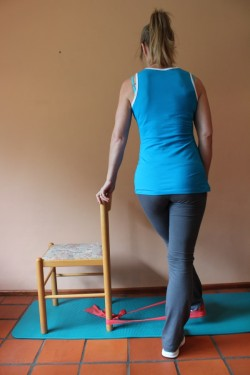 inner thigh muscle exercises in standing with theraband 2; p57